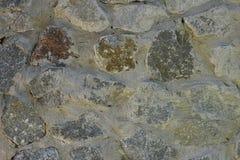 Madera del edificio del cemento del ladrillo del ladrillo de la corteza de árbol de la composición del fondo, Fotografía de archivo libre de regalías
