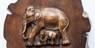 Madera del elefante Foto de archivo