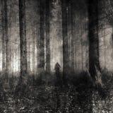 Madera del fantasma Fotos de archivo
