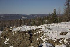 Madera del invierno con las piedras Fotografía de archivo libre de regalías