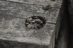 Madera del pedazo Imagen de archivo libre de regalías
