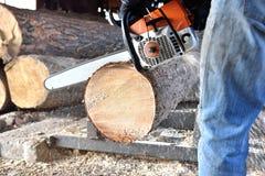 Madera del sawing de la motosierra Imagen de archivo libre de regalías