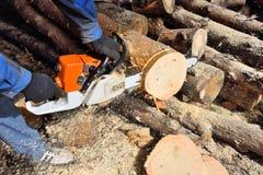 Madera del sawing de la motosierra Imagen de archivo