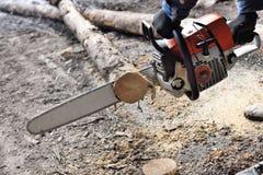 Madera del sawing de la motosierra Fotografía de archivo