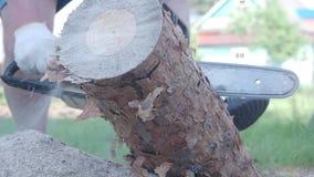 Madera del sawing del hombre con la motosierra almacen de metraje de vídeo