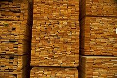 Madera dura en almacenaje Imagen de archivo libre de regalías