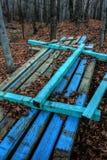 Madera en el bosque Imágenes de archivo libres de regalías