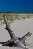 Madera en la playa Imagenes de archivo