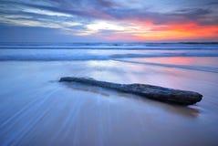 Madera en la playa Foto de archivo libre de regalías