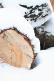 Madera en nieve Imágenes de archivo libres de regalías