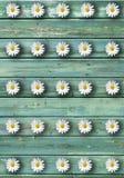 Madera floral Imagen de archivo