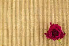 Madera, fondo de mimbre con la flor de la rosa del rojo Fotografía de archivo libre de regalías