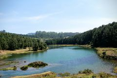 Madera lateral del lago Imagen de archivo