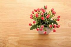 Madera plástica roja colocada en un florero Coloridos hermosos perfeccionan para la estación del amor Fotografía de archivo libre de regalías