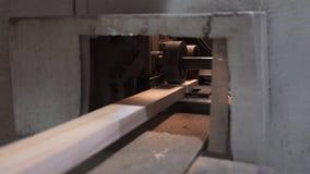 Madera que enarena que procesa la madera que procesa a tableros almacen de video
