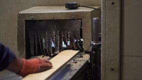 Madera que enarena que procesa la madera que procesa a tableros almacen de metraje de vídeo