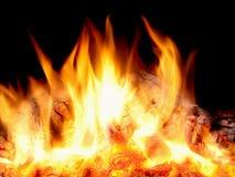 Madera que quema en fuego Imágenes de archivo libres de regalías