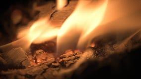 Madera que quema en la chimenea