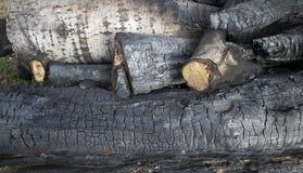 Madera quemada Imagen de archivo