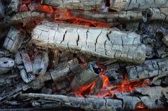 Madera quemada Imagen de archivo libre de regalías