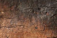 Madera seca vieja quemada con las grietas Foto de archivo