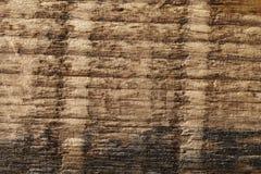 Madera seca vieja resistida y grunge Fotografía de archivo libre de regalías