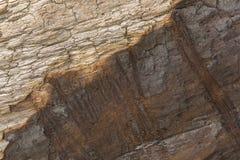 Madera socarrada Fotografía de archivo