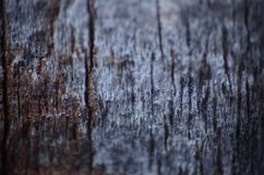 Madera vieja con la superficie agrietada foto de archivo