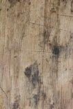 Madera vieja de la teca Fotos de archivo