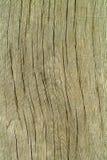 Madera vieja de la textura del fondo Fotografía de archivo libre de regalías