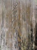 Madera vieja manchada del Grunge fotografía de archivo libre de regalías