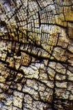 Madera vieja resistida detalle abstracto Imagenes de archivo