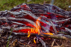 Madera y carbón ardientes en chimenea Primer de la madera ardiente caliente, Imagen de archivo libre de regalías