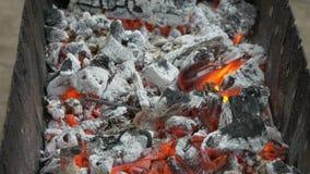 Madera y carbón ardientes en el brasero Preparación de kebab y de la parrilla de la barbacoa almacen de video