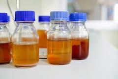 Madia de la botella para la cultura de las bacterias fotos de archivo