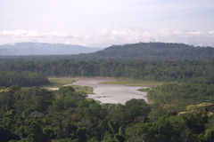 Madidi National Park, Bolivia Stock Image