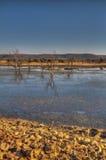 Madikwe Game Reserve Stock Photo