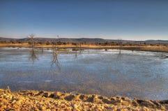 Madikwe Game Reserve Stock Image