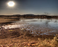 Madikwe Game Reserve Royalty Free Stock Photography