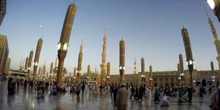 Madinah 达成协议阿拉伯半岛地区夹子上色了海拔greyed包括映射路径替补沙特被遮蔽的状态周围的领土 免版税库存图片