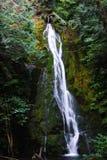Madison Falls. In the Olympic peninsula of Washington state Stock Image