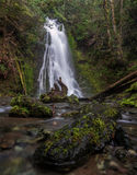 Madison Falls, Washington State Fotografia de Stock Royalty Free