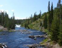 madison flod Arkivbild