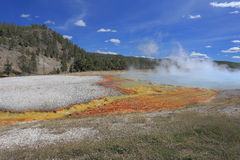 Madison Junction area-Yellowstone National Park stock photos