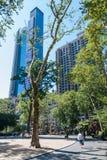 Madison kwadrata park, NYC Fotografia Royalty Free