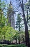 madison ny parkfyrkant york Arkivbild