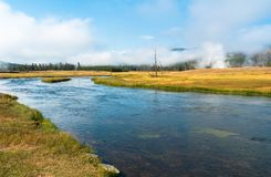 Madison River au parc national de Yellowstone, Wyoming, Etats-Unis image stock