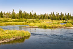 Madison river near West Yellowstone Stock Images