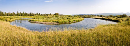 Madison river near West Yellowstone, USA Stock Images