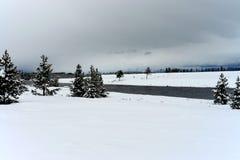 Madison River Yellowstone Stock Photography